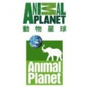 Animal Planet動物星球(美國) (2)