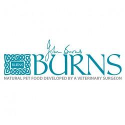 BURNS(英國)