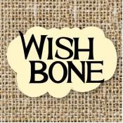 WISHBONE( 威斯邦) (1)