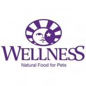Wellness (1)