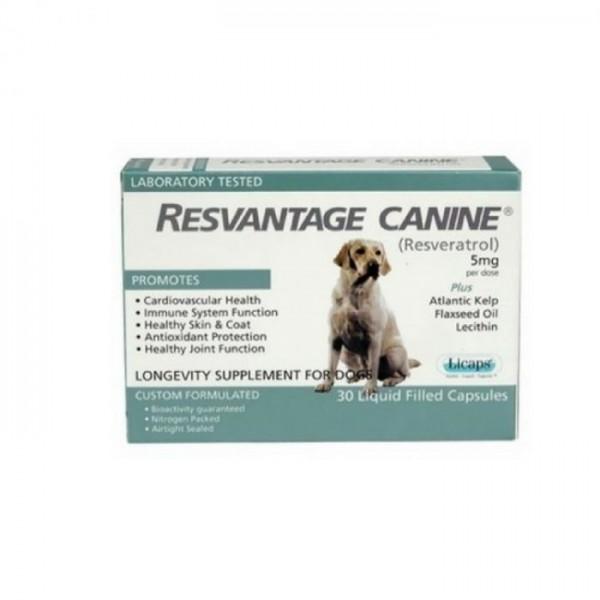 Resvantage Canine 維蘆醇 白藜蘆醇 (犬用) [30粒]